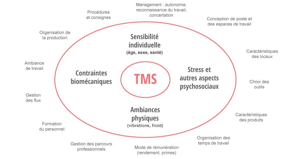 Les origines des TMS